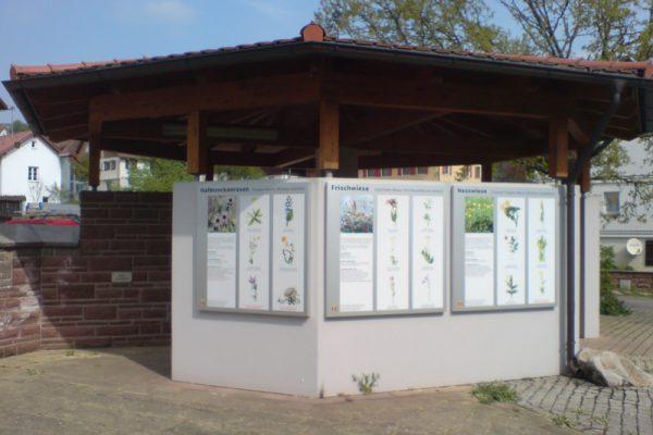 Lehrpfad Betzweiler
